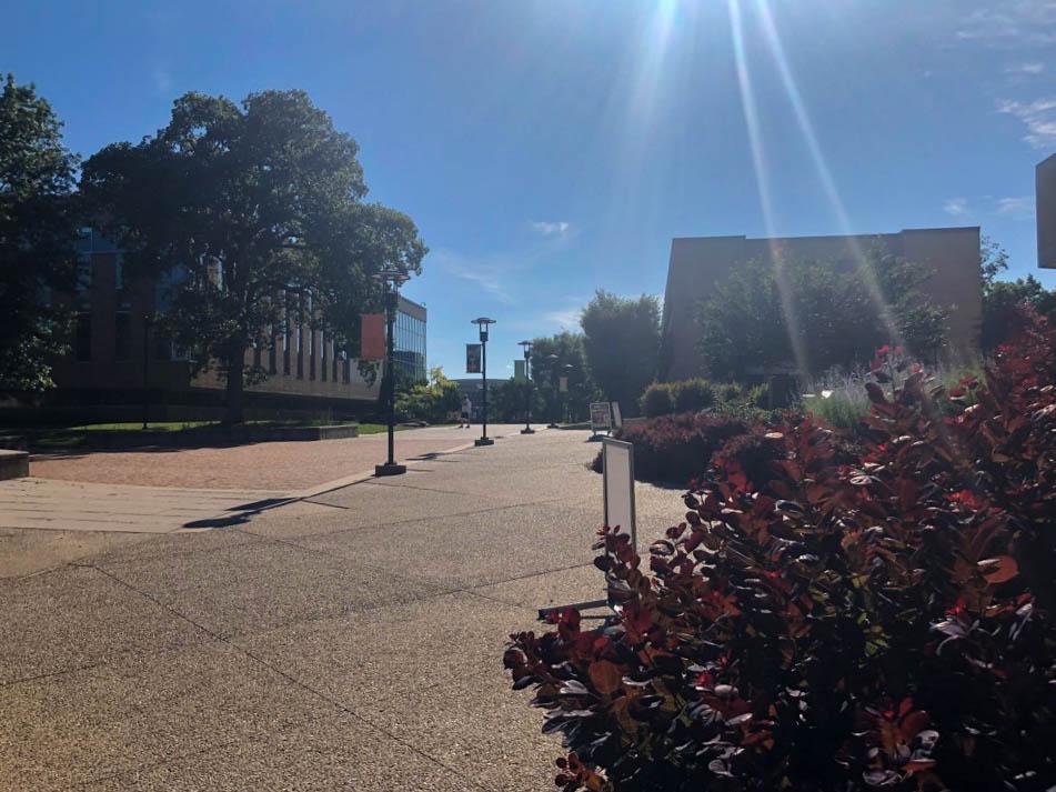 Pisanje magisterija na univerzi v ZDA